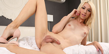 Cumming Shemale Holly - Holly Parker: Sexy Shemale Pornstar Bio, Hot Videos And Pics