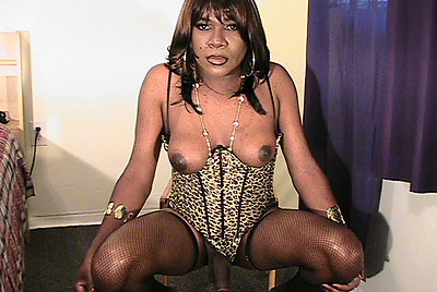 hot black transsexual top from south florida ts tonya